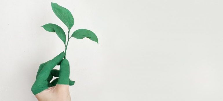 Hand holding a green leaf to present that one of advantages of sea cargo is sustainability
