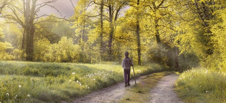 man-walking-in-the-forest