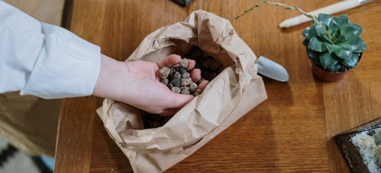 Person removing rocks before moving your pet terrarium